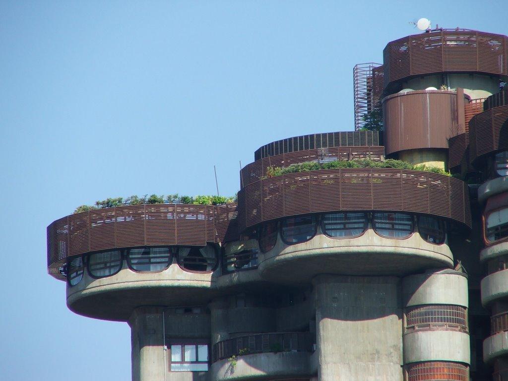 azoteas torres blancas