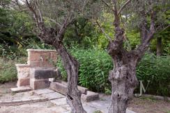 Casa de estilo Toscana en parcela de 10.000m2 24