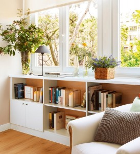 ventana-plantas-1657901
