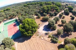 Plot of hectare (10.000m2) in Las Encinas, within Escorzoneras, Pozuelo