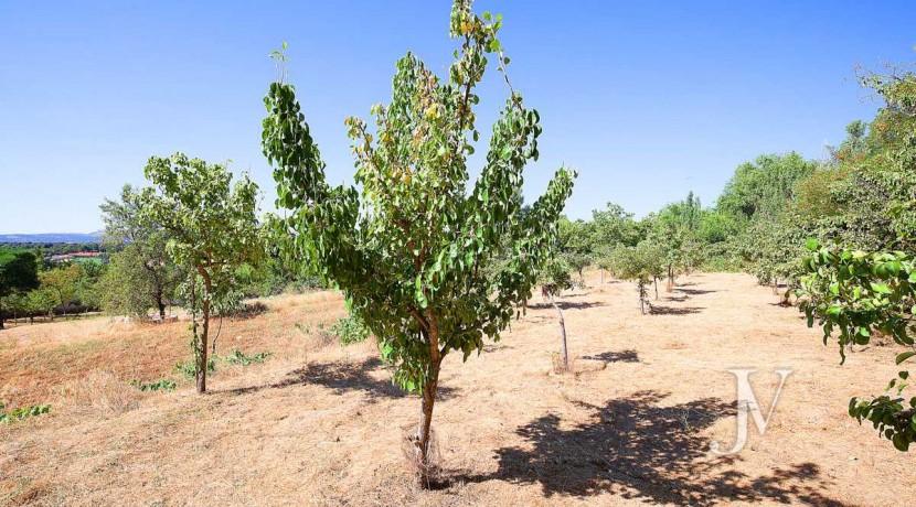 Finca de Recreo de 6,5 hectáreas en Navalafuente, Madrid. 26