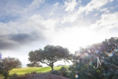 Ciudalcampo- Lindando con El Golf, chalet del 2008, sobre parcela de 2.640m2 12