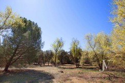 La Moraleja- Terreno de 10.000m2 para construir un unifamiliar de 3.300m2. Buena ubicación. 6