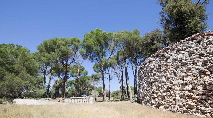 La Moraleja- terreno con vistas, de 46.309m2 para 1 o 4 unifamiliares, en la mejor zona de La Moraleja 14