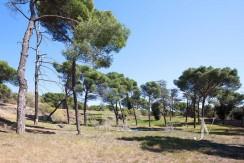 La Moraleja- terreno con vistas, de 46.309m2 para 1 o 4 unifamiliares, en la mejor zona de La Moraleja 20