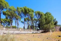 La Moraleja- terreno con vistas, de 46.309m2 para 1 o 4 unifamiliares, en la mejor zona de La Moraleja 22