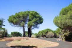 La Moraleja- terreno con vistas, de 46.309m2 para 1 o 4 unifamiliares, en la mejor zona de La Moraleja 4