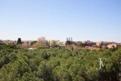 La Moraleja- terreno con vistas, de 46.309m2 para 1 o 4 unifamiliares, en la mejor zona de La Moraleja 5