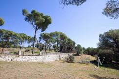 La Moraleja- terreno con vistas, de 46.309m2 para 1 o 4 unifamiliares, en la mejor zona de La Moraleja 6