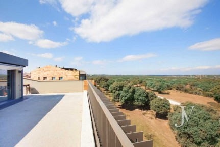 One of the best penthouses in Madrid, bordering el Pardo, impressive views