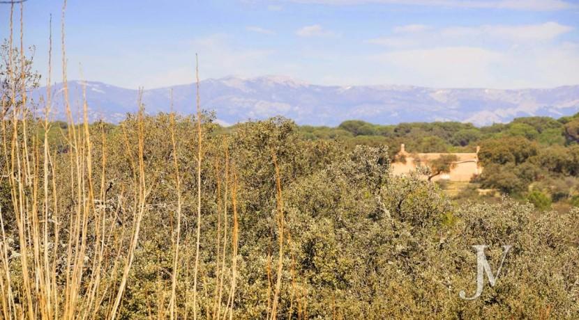 Las Encinas- chalet con vistas a la sierra en parcela de 10.000m2, posibilidad de llegar hasta 30.000m2 27