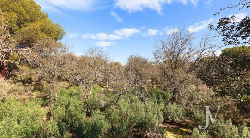 Las Encinas- chalet con vistas a la sierra en parcela de 10.000m2, posibilidad de llegar hasta 30.000m2 36