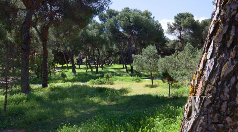 Puerta de Hierro, lindando con la Dehesa de la Villa, buenas vistas 46